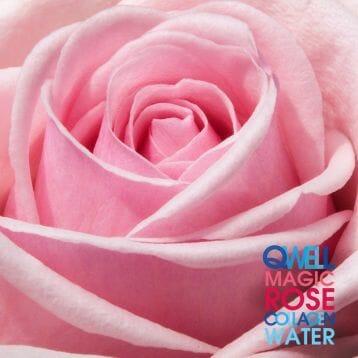 Damask-rose_2