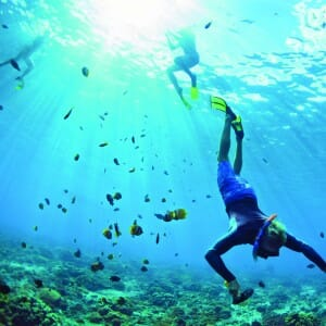 Qwell_Snorkeling_Article_7.1